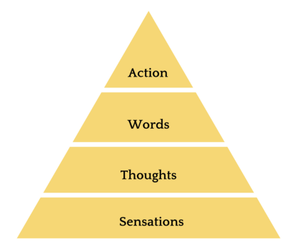 Every thought, word and behavior starts as a physical sensation.